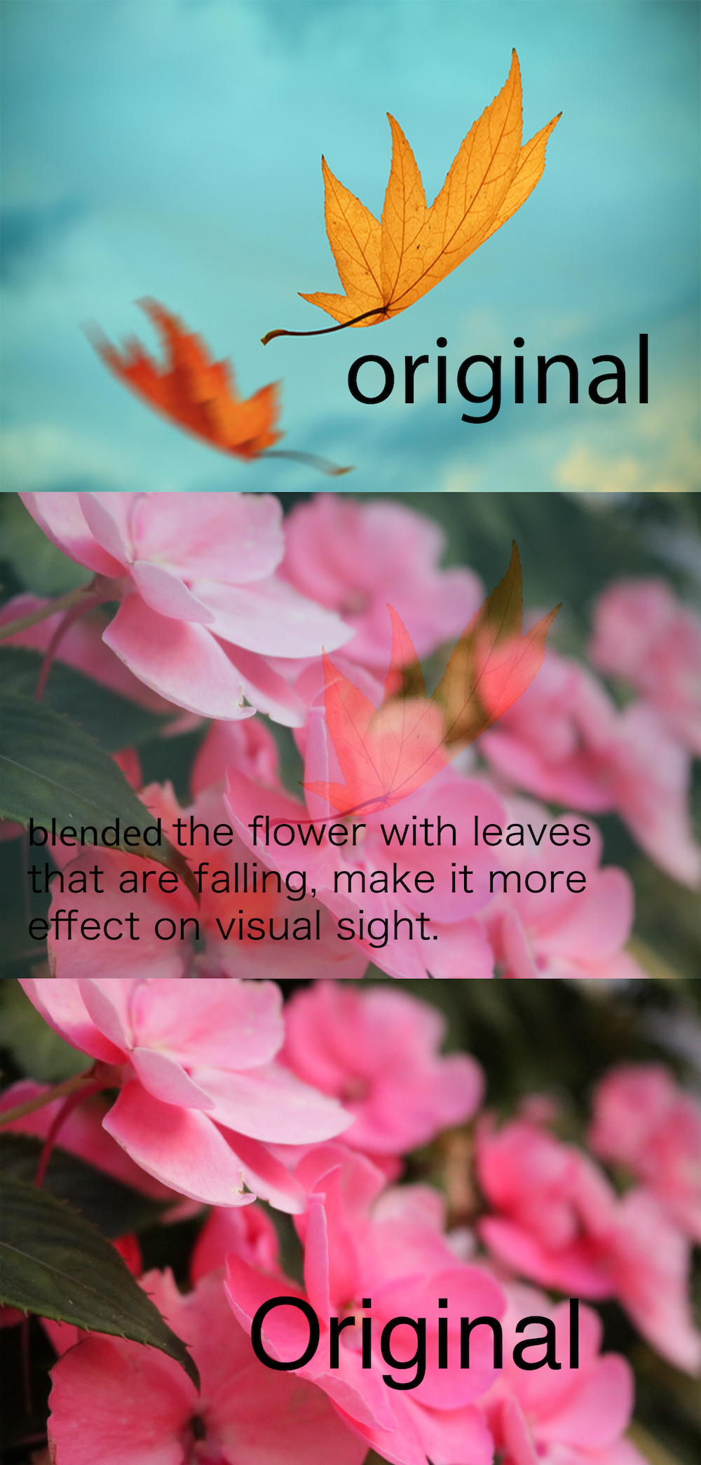 blend mode flower and leaf