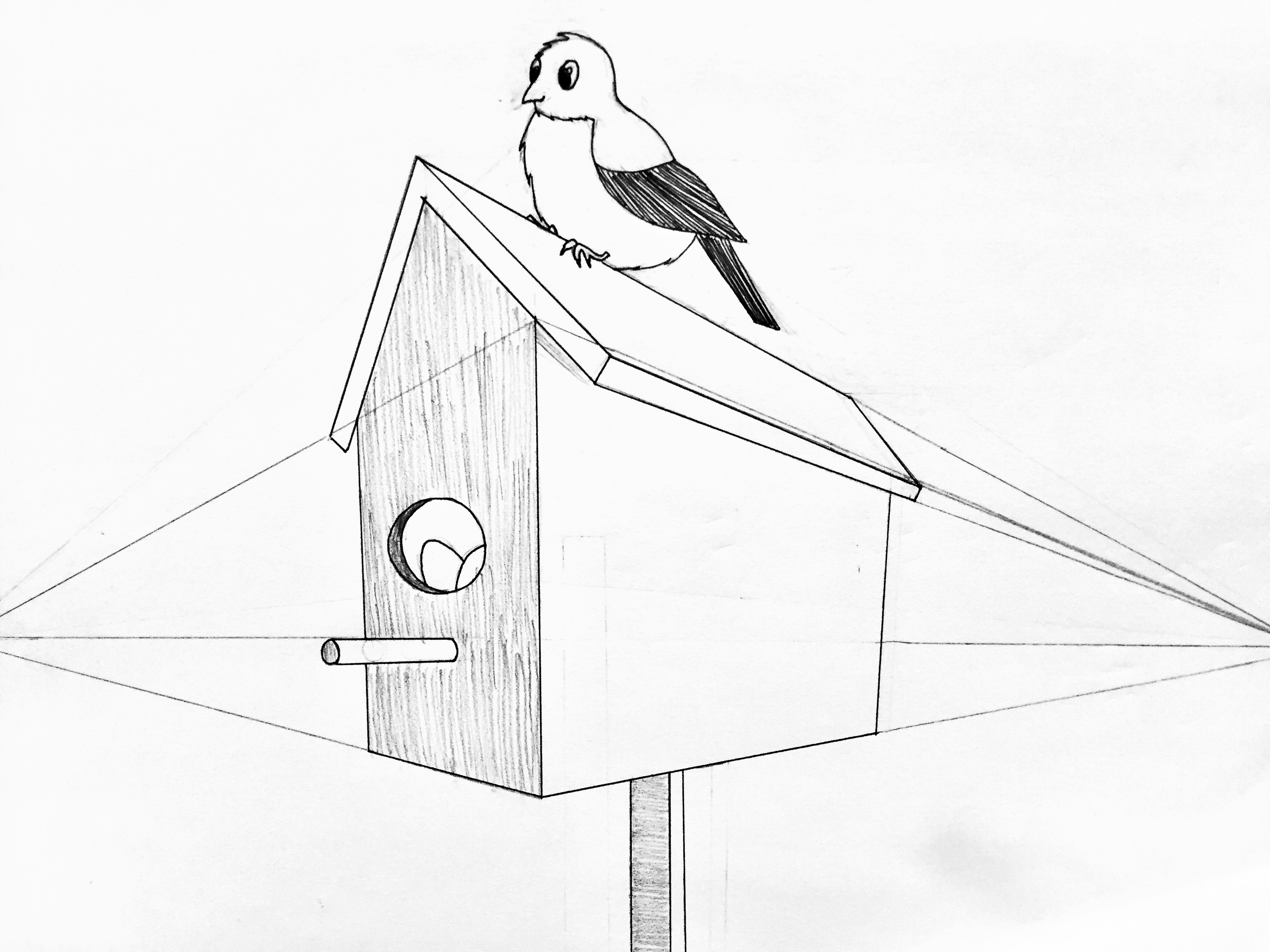 A 2-point perspective drawing of a birdhouse with a bird sitting on top.