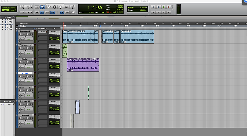 A photo displaying audio clips edited and arranged in Pro Tools.