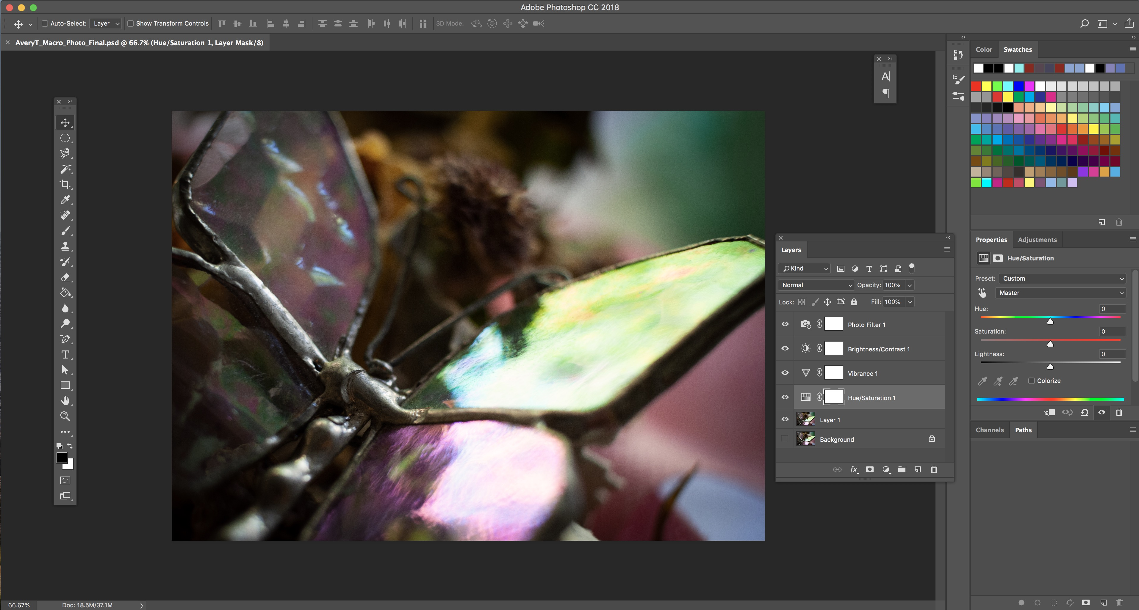 Screenshot of Workspace in Adobe Photoshop for Macrophotography