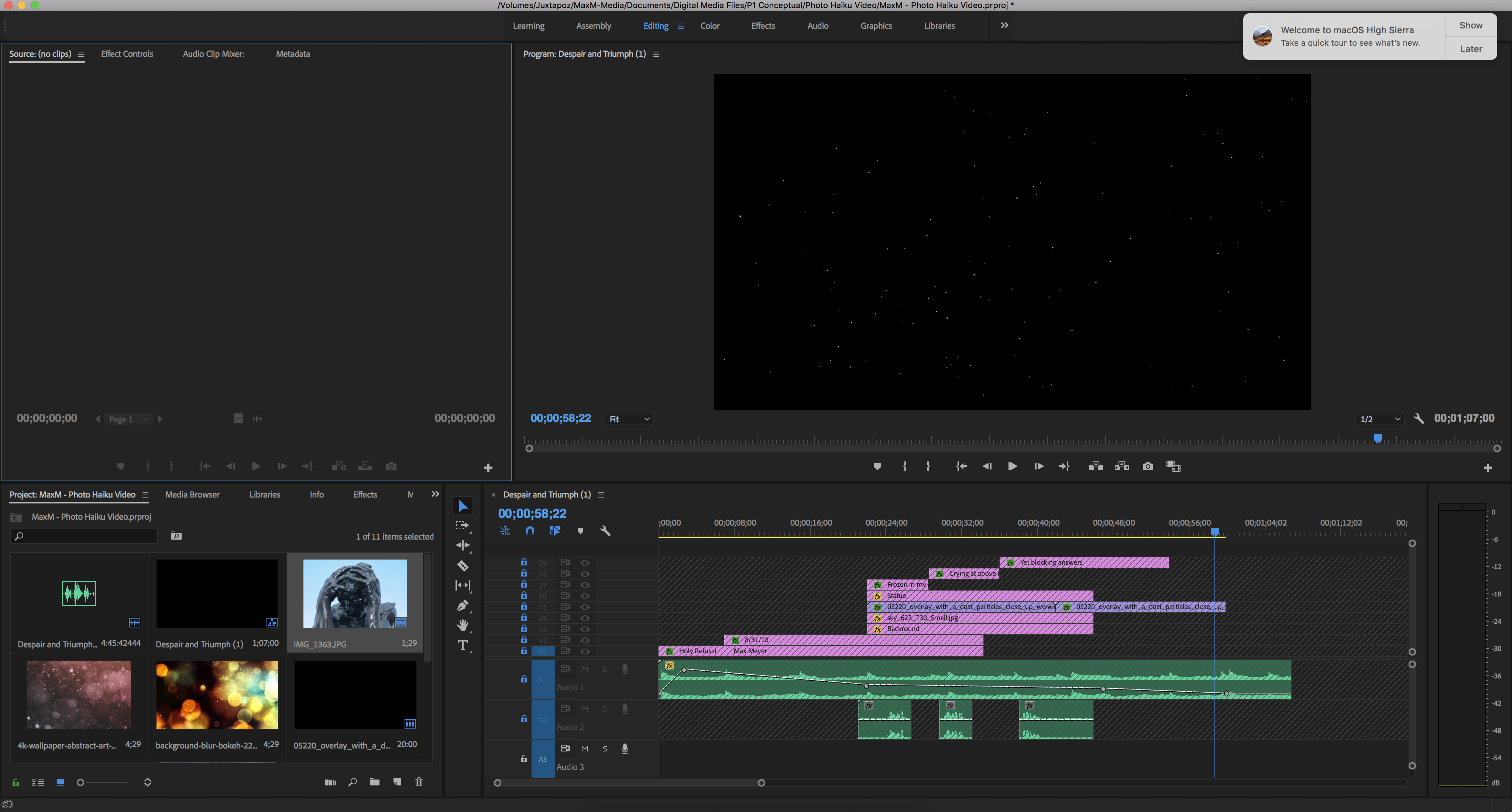 This is my Adobe Premier Pro Workspace. You can see how I edited my video together.