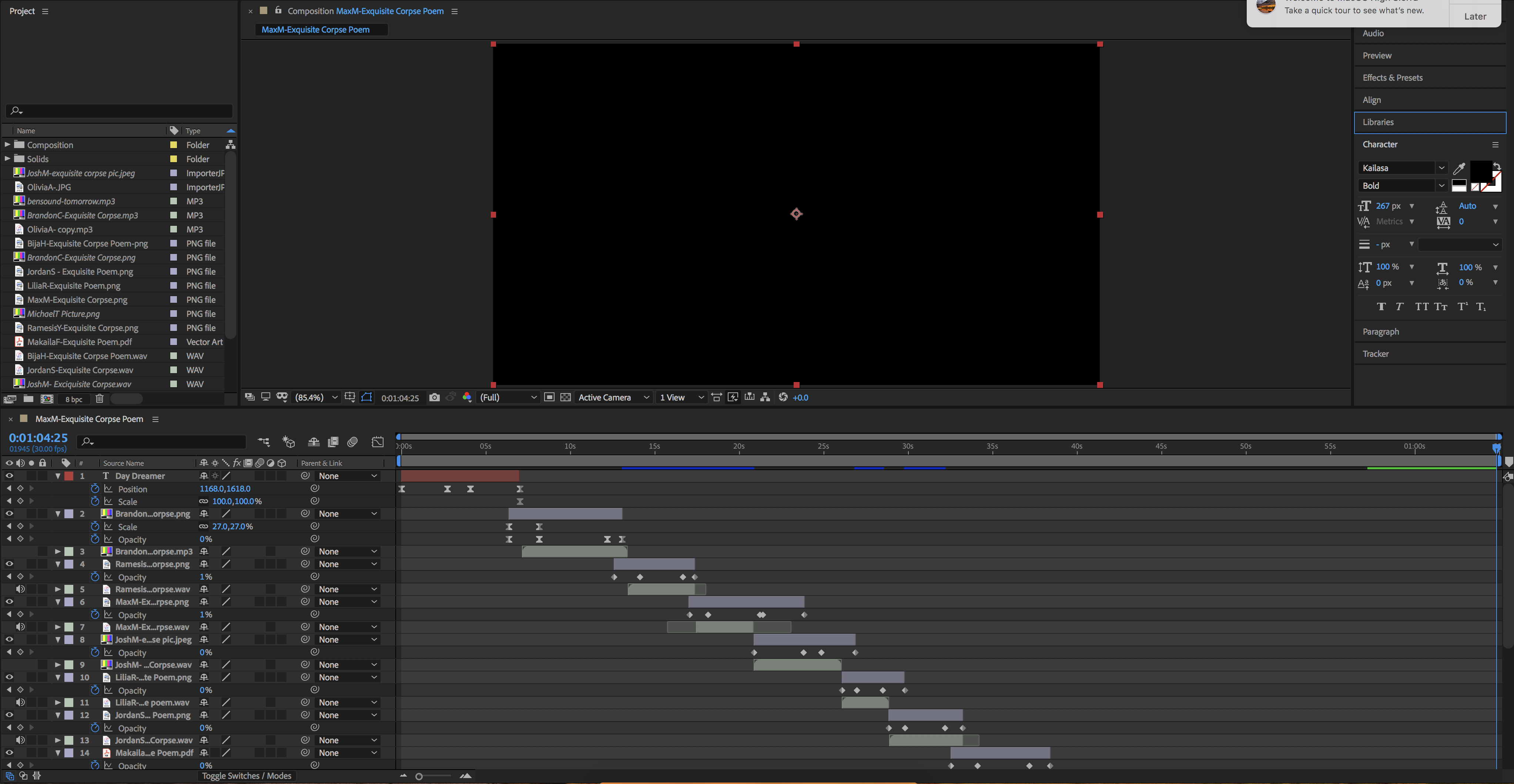 This is my Adobe After Effects workspace I used in order to create my exquisite poem.