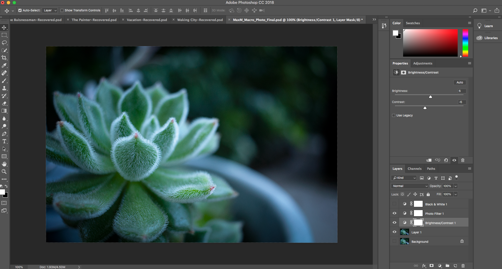 This is my adobe photoshop workspace I used in creating my macro photo and conceptual photo.