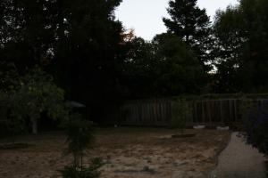 Brightened Wide Shot of Backyard
