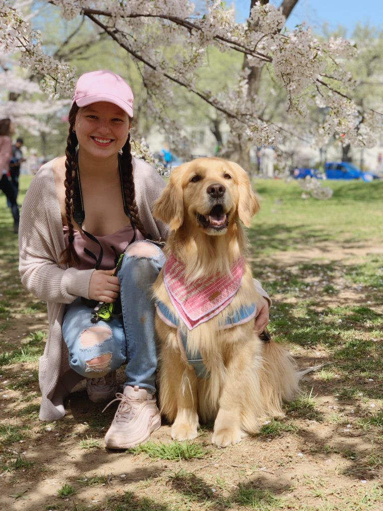 Claire and Percie sitting in front of a cherry blossom tree
