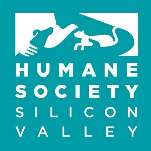 Humane Society Silicon Valley blue logo