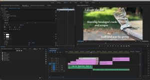 This is a screenshot of my premier pro workspace, showing how I put my video together