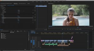 This screenshot shows my premier pro workspace for my experimental film, showing everything I did to make it happen.
