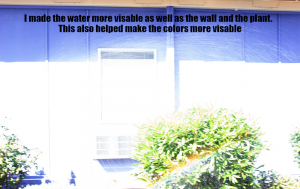 A bright picture of a window with a bush next to it and water being sprayed across