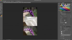 Screenshot of the editing process of my Blend Mode Images in Photoshop.
