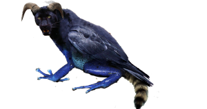 The image is a photo of a panther, crow, ram, frog, and raccoon all combined together to make one creature.